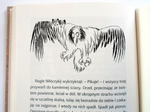 strona 66
